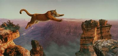 LION'S  LEAP OF FAITH----------FAITH GOD IS MIGHTY